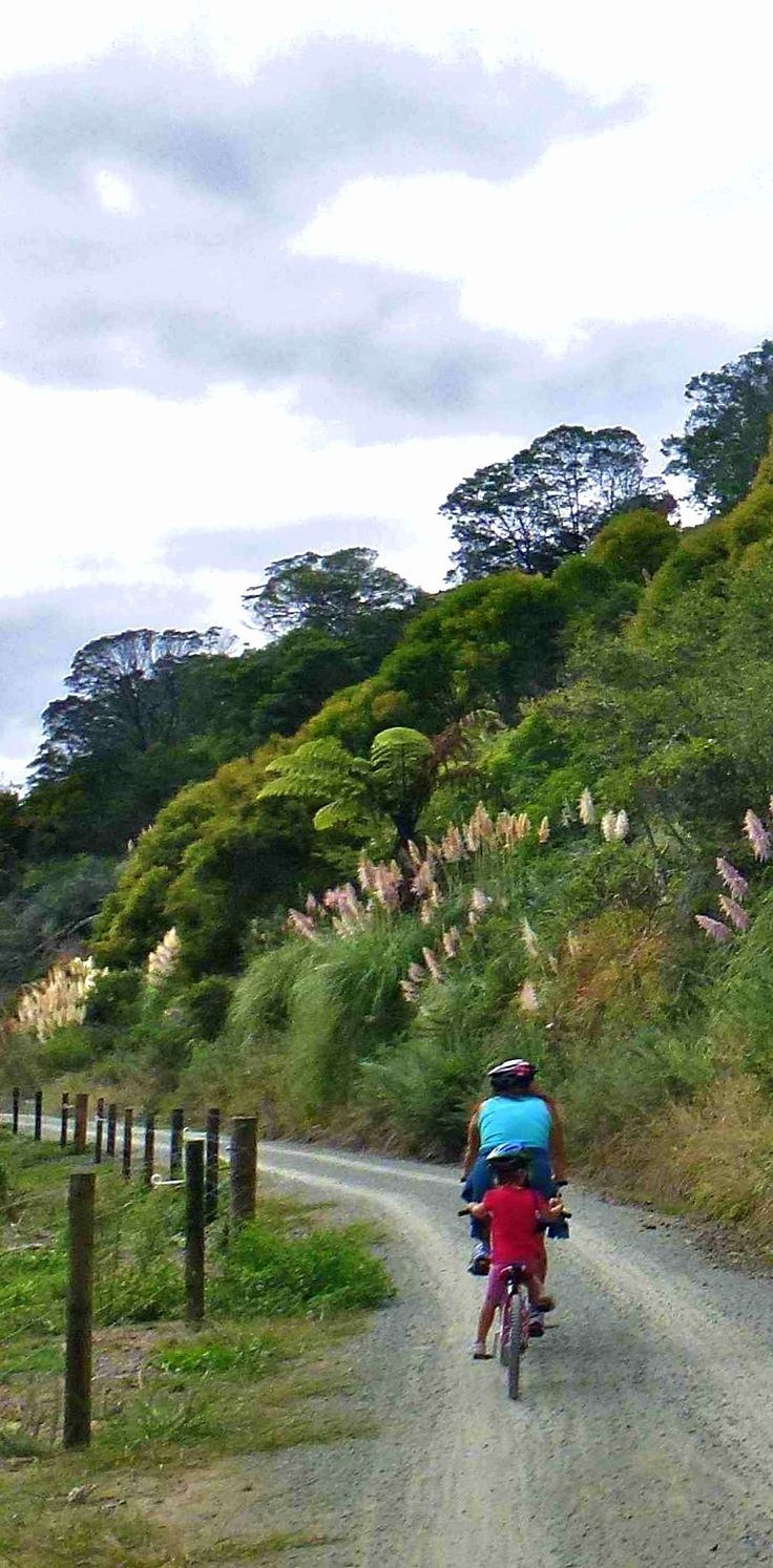 Hauraki Cycle Trail - New Zealand