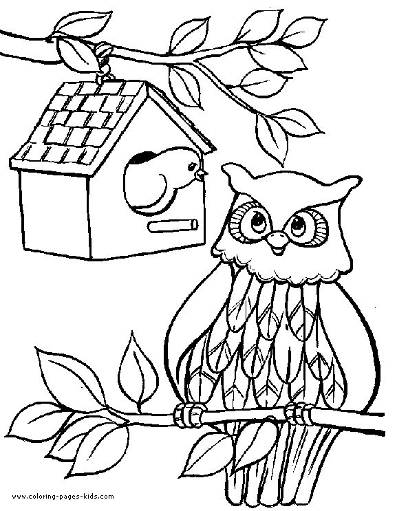 224 best Party Ideas images on Pinterest Owl coloring pages