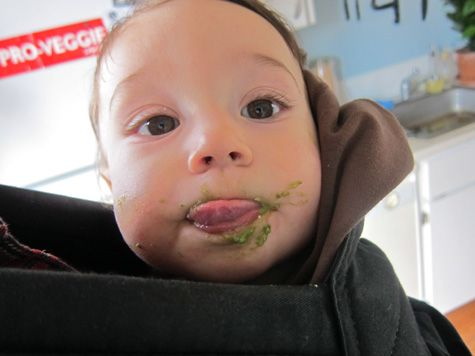 The Vegan Baby-really awesome website about a vegan baby and what he eats!