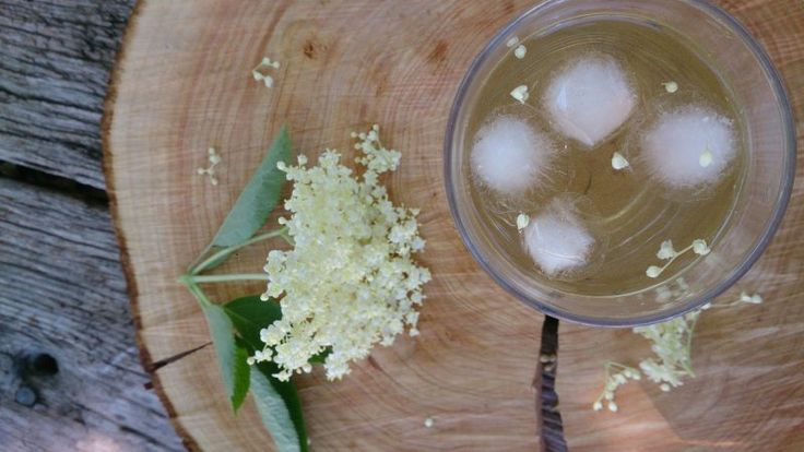 Hyldeblomstdrik opskrift- Huldeblomst har  sæson i juni