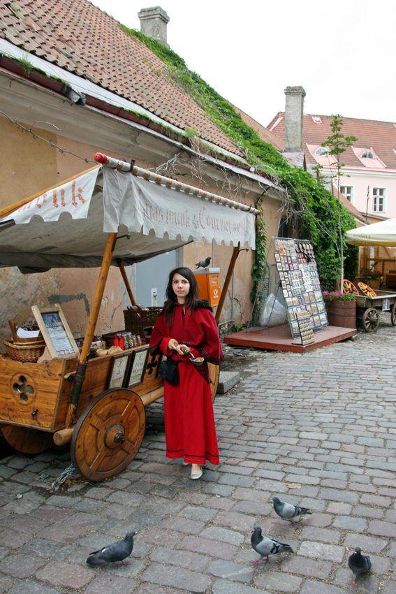 #Tallinn, capital da #Estónia, no golfo da Finlândia, nas margens do #Báltico, é um lugar muito apreciado pelos turistas, pelo ambiente medieval ali recriado