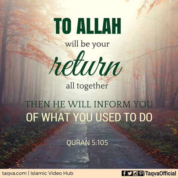 81 beautiful inspirational islamic quran quotes. quran ...