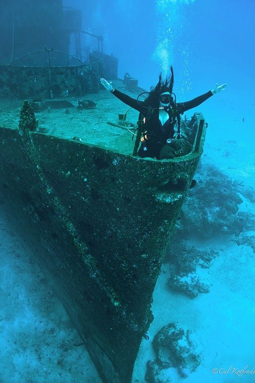 Scuba dive down and explore the titanic