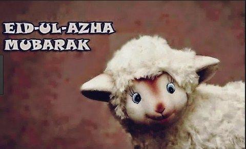 50  Eid ul Adha Wishes and Greetings – Wishes For Eid ul Azha:
