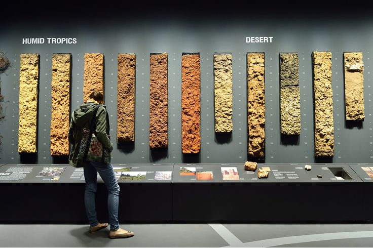 The World Soil Museum is a new location atthe University of Wageningen. Aunique collection of soil profiles isexhibited. These soil profiles show how valuable soil is for alllife on earth. I de...