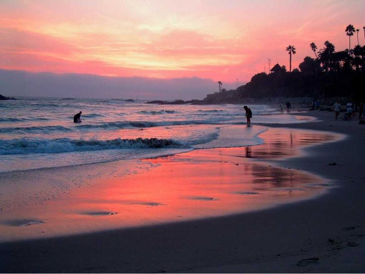 I would also stop at Malibu beach in California. I want to go there to surf and fish in the ocean.