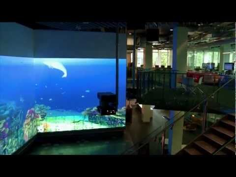 The Cube at QUT - world's biggest multitouch installation - YouTube
