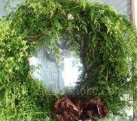 Sweet Annie has been used for centuries in its dried form in wreaths. Eterisk olja från växten innehåller bland annat ämnet artemisinin, som har flera medicinska effekter. Växten har länge använts i traditionell kinesisk medicin på grund av flera olika egenskaper.