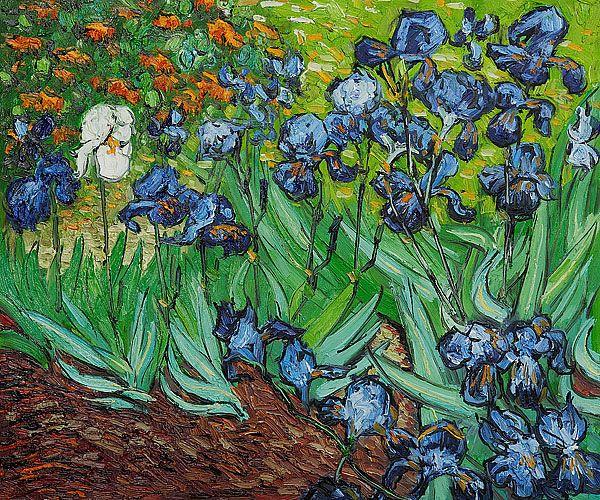 Van Gogh's IrisesVincent Of Onofrio, Vans Gough, Famous Artworks, Vincent Vans Gogh, Getty Museums, Favorite Artworks, Gogh Painting, Vincent Van Gogh, Gogh Iris