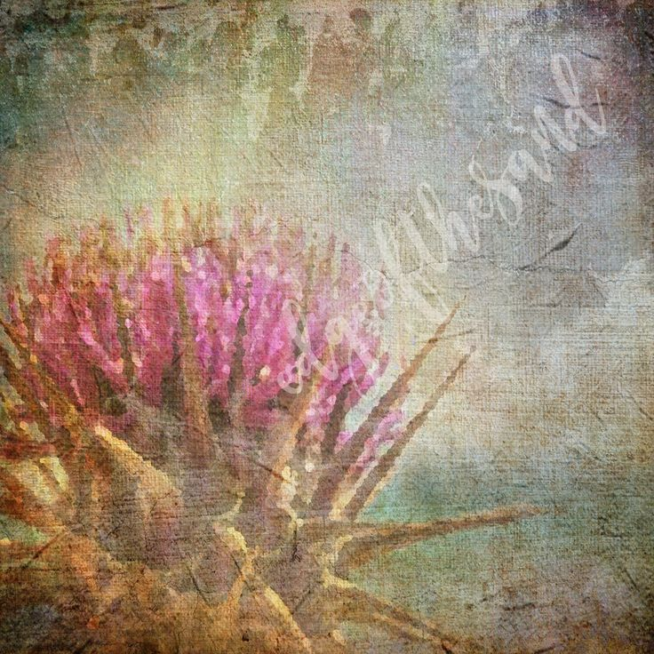 digital download thistle grunge painting scrapbooking floral flower weed background art paper craft by edgeofthesand on Etsy
