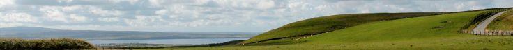 http://www.authenticireland.com/medieval-irish-history-of-ireland/ So far, I <3 this site!!!!