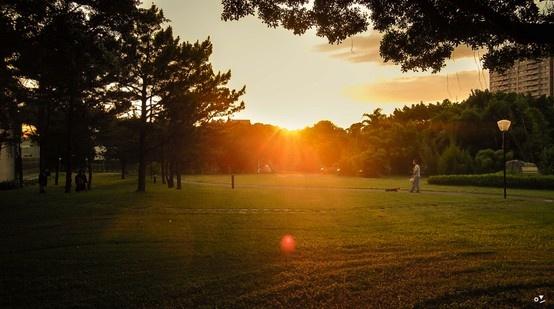 ✐ [06] _2013/6/9  夕陽夕陽夕陽夕陽夕陽 夏天的夕陽好可愛喔