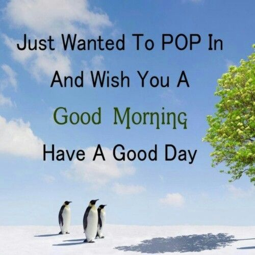 Romantic Morning Quotes For Her: 17 Best Images About Good Morning On Pinterest