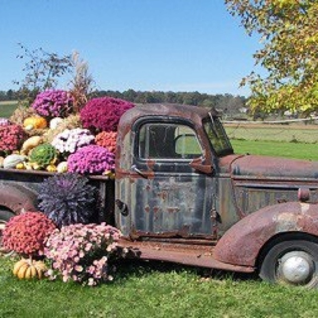 1000+ Images About Floral Trucks / Carts On Pinterest
