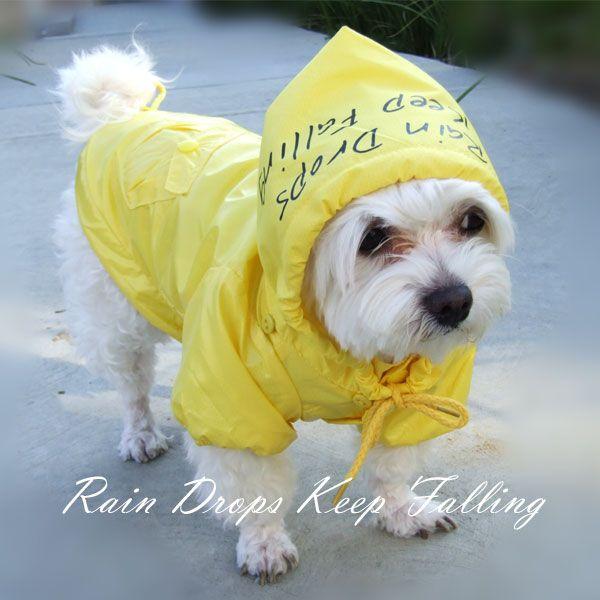 raincoat for dogs, how adorable :): Rain Coats, Sooo Adorable, Dogs Friends, Doggie Raincoat, Animal Sweetie, Dogs Apparel, Adorable Misc, Dogs Raincoat, Rain Drop