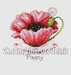 tea cup poppy-1