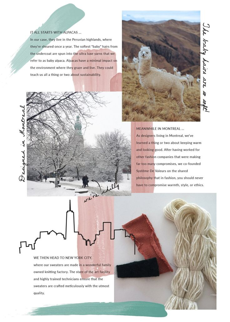 ABOUT US - ABOUT THE ALPACAS - OUR STORY