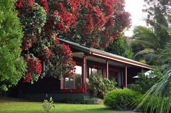 Sanctuary in the Cove romantic honeymoon accommodation. Northland wedding venue.