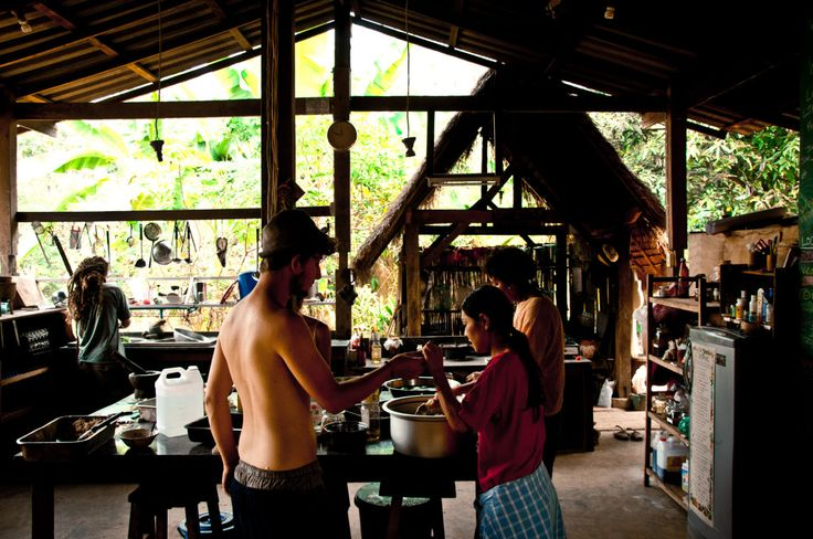 Learn Permaculture at the Panya Project organic farm in the Mae Tang valley, Chiang Mai province (Thailand).