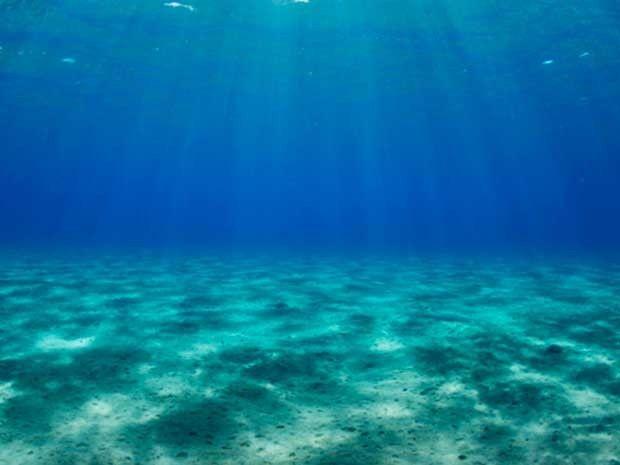 Espacio de imágenes y palabras...: En el fondo del mar