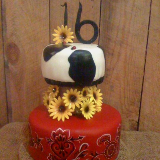 Country girl birthday cake all edible complete with lady bugs