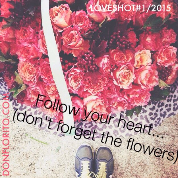 L O V E S H O T by DONFLORITO  #1 of this year!! #1/2015  (It will be a monthly post) #loveshot #flowers #donfloritorules #wildatheart Just GO where the heart goes ❤️