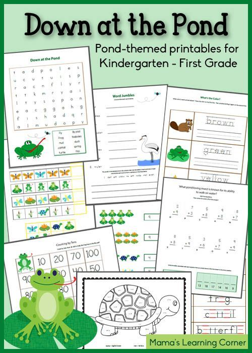 Down at the Pond Printable Packet for KindergartenFirst