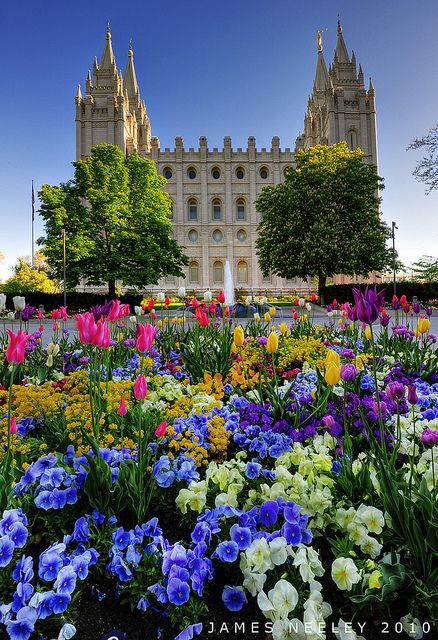 ~ Spring Flowers ~ Temple Square in Salt Lake City, Utah...