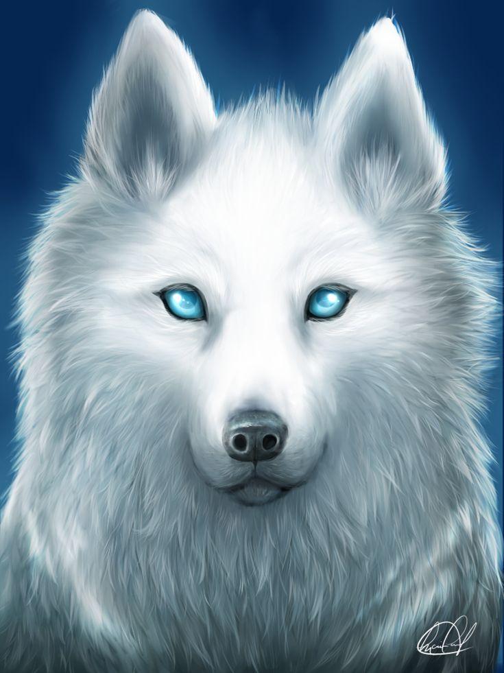 Resultado de imagen para anime white wolf