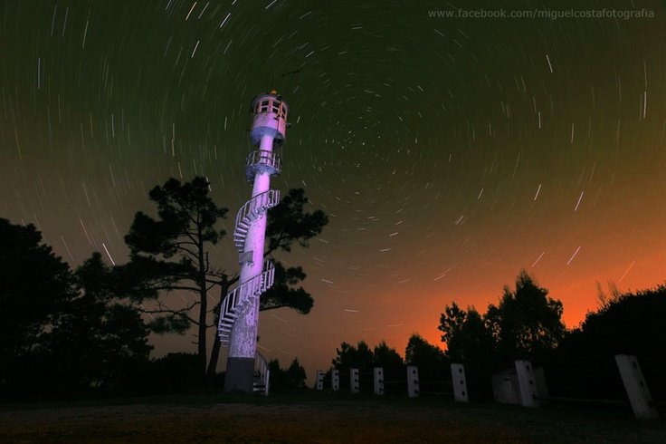 The sky at night in the Leiria pinetree forest (by Miguel Costa Photography)