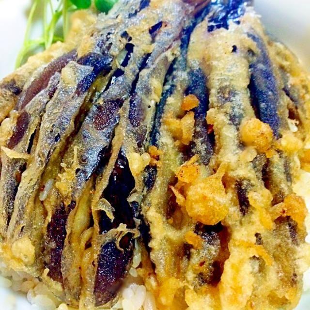 ナスの古漬けの天丼です。 家庭菜園で、栽培していた、つかり過ぎたナスの浅漬け消費料理です。 彩りのカイワレも家庭菜園でむしり取りました(^∇^) - 186件のもぐもぐ - サクサクなす天丼ナス〜古漬け使用 by GakuSakigake