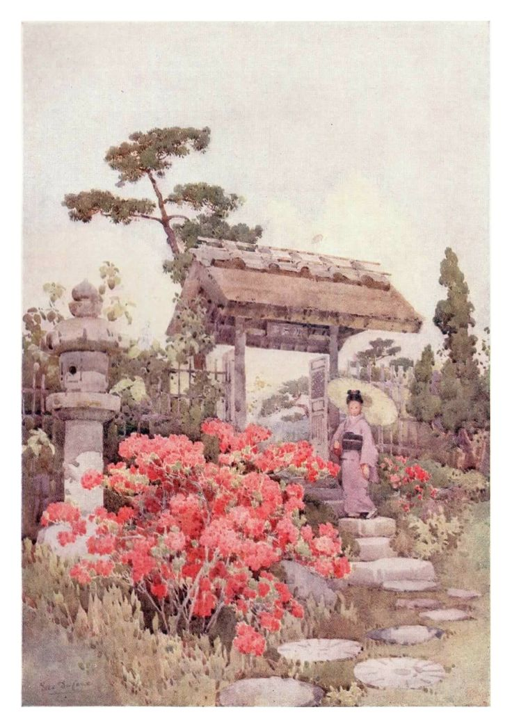 """""""Azaleas"""" by Ella Du Cane from """"The Flowers and Gardens of Japan"""". Azaleas were chosen with great effect for their gorgeous displays and used to finish of many a set piece in old Japanese gardens. The owners of these gardens would often use the tranquillity of their gardens to relax after a hard day."""