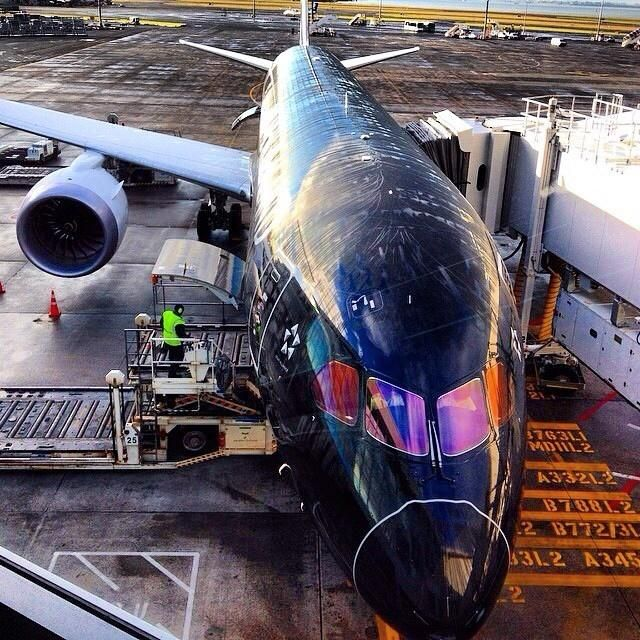 Air New Zealand Boeing 787-900 Dreamliner, Auckland International Airport | Do you also like design & architecture? Follow transreformas.com boards on pinterest.com/transreformas/