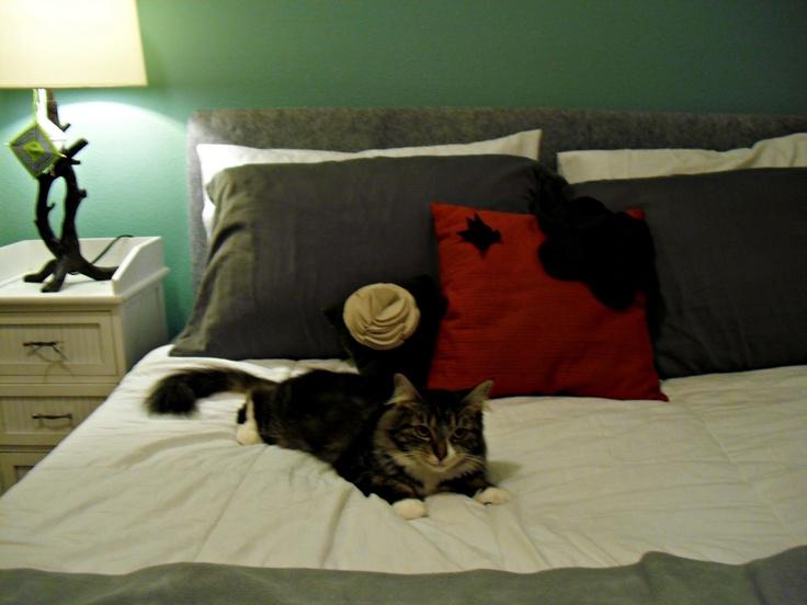 90 best Homemade headboards images on Pinterest | Dorm ideas, Bed ...