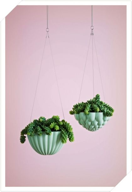 hanging *jelly* planters