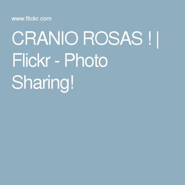 CRANIO ROSAS ! | Flickr - Photo Sharing!