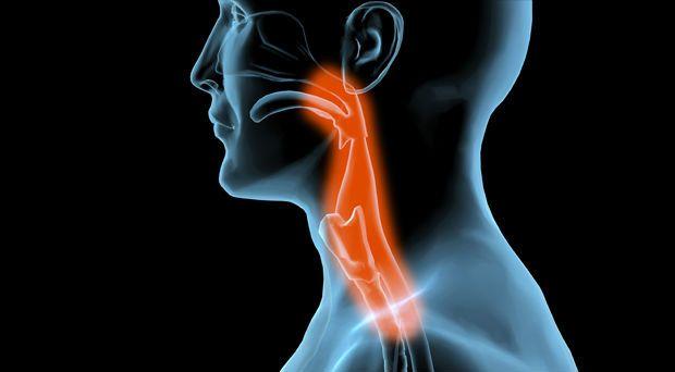 Dor de garganta pode ser um sintoma de infecções, como amigdalite ou faringite. Entenda as causas de dor de garanta e qual o tratamento.