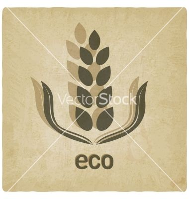 Organic grain old background vector 1810515 - by natbasil on VectorStock®