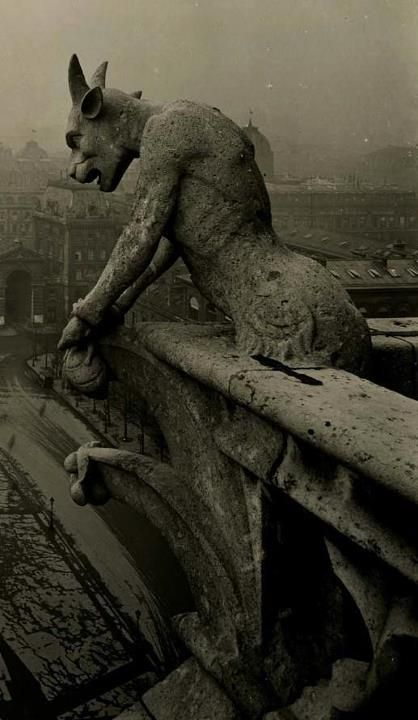 1910 photo of the Grotesque at Notre Dame, France... now imagine this as a weeping angle and your nightmares just got worse.