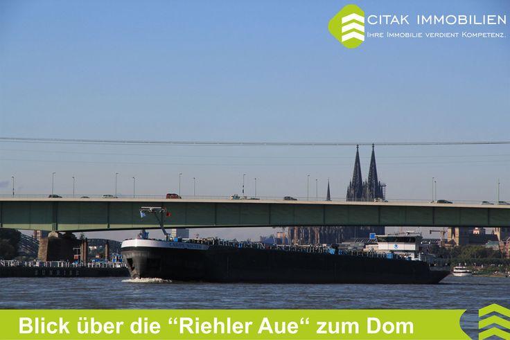Köln-Riehl-Blick über die Riehler Aue zum Dom