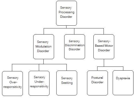 Best 25 sensory processing disorder symptoms ideas on for Sensory motor integration disorder