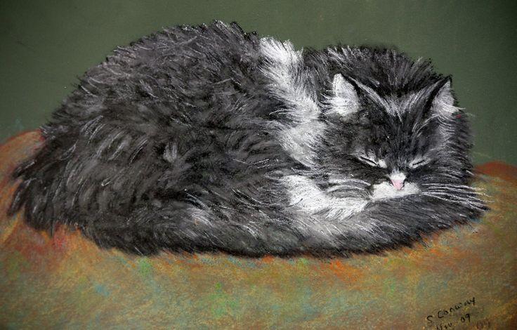 https://flic.kr/p/8MbLQH | pastel kitty