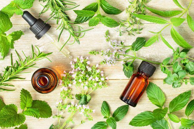 Jak použít zázračný tea tree olejíček? Foto: