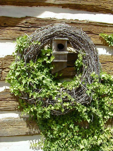 I could start this today with my ivy on the north side of the house.  Cool idea. Good for year round.