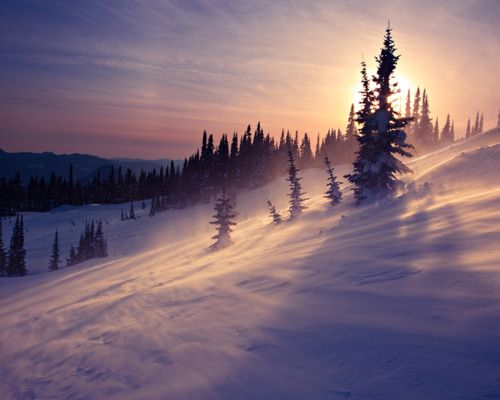 Winter and ski legs!