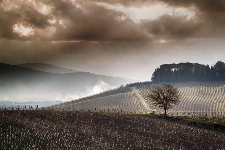 ...tra le vigne del chianti by Giovanni Volpe on 500px