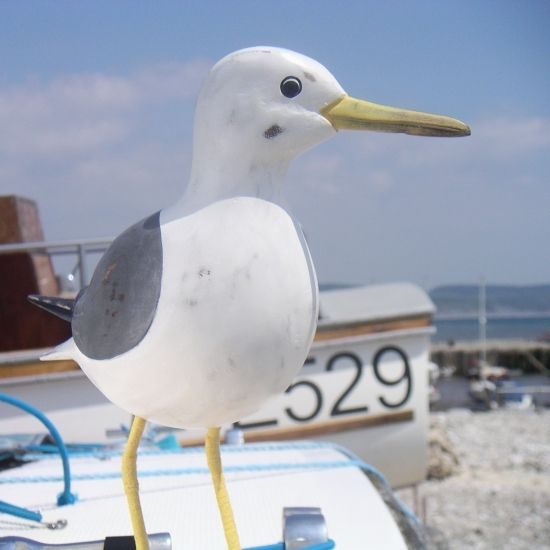 11 Best Sea Gull Crafts Images On Pinterest