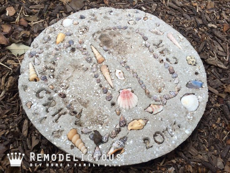 Beach + Shell Themed DIY Stepping Stone Craft