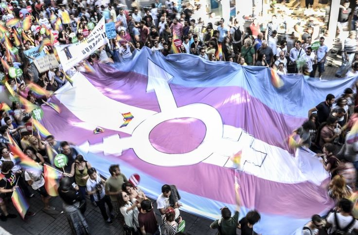 One-quarter of Americans say people should never be allowed to change their legal gender, half of Brazilians know a transgender person, and lots more from a BuzzFeed News/Ipsos survey in 23 countries around the world.