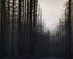 Carlijn Mens Charred landscapes  Charcoal on paper  196x160 cm